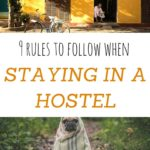 9 rules to follow along with when remaining inside a hostel – anita hendrieka